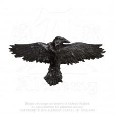 """Alchemy Gothic """"Black Raven"""" Haarspange"""